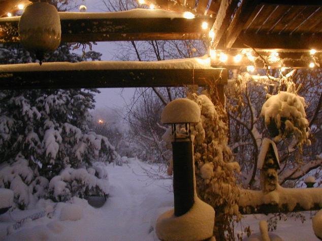 snowstorm063