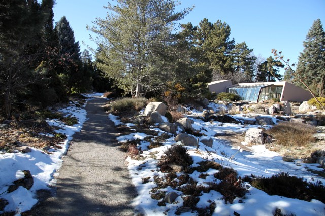 the rock alpine garden, and the alpine house