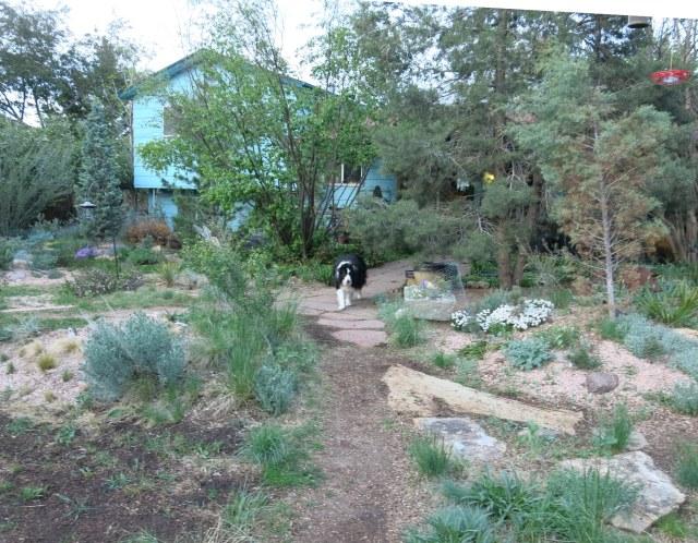 me walking in the garden