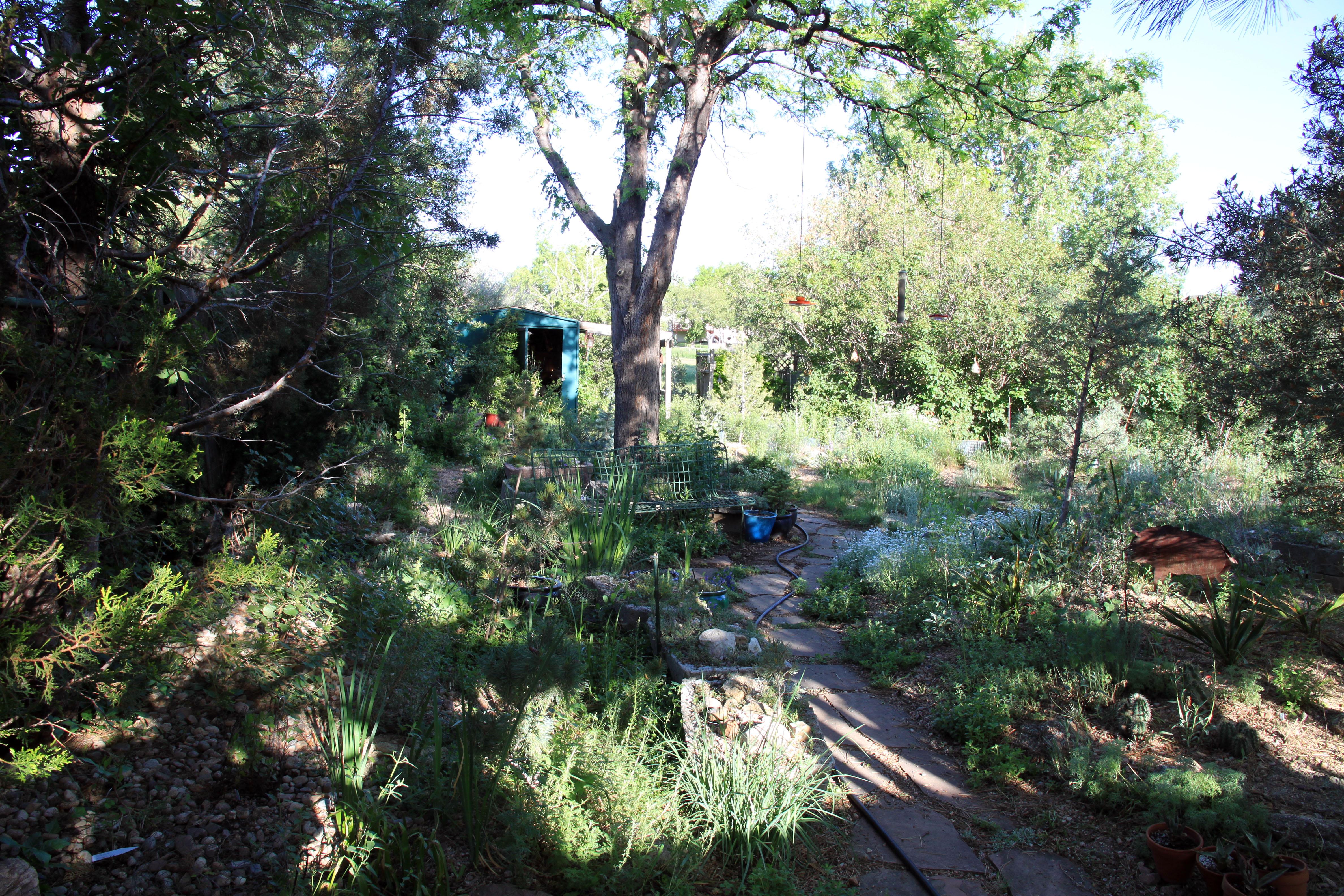 Cactus At Timberline Gardens The Miserable Gardener