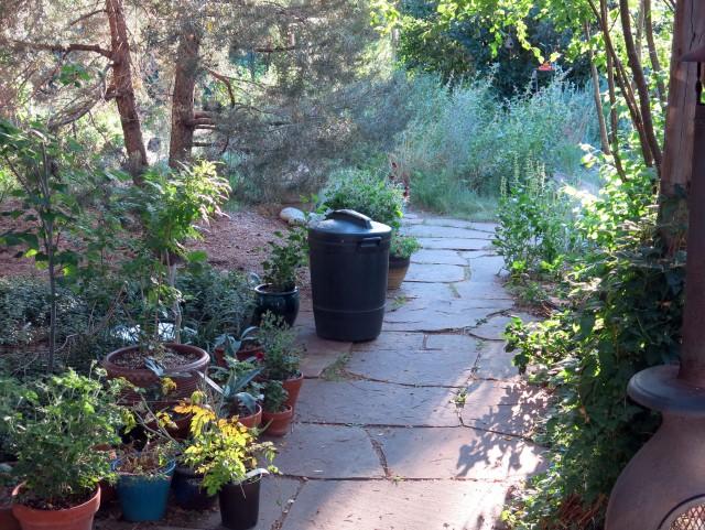 la poubelle dans le jardin