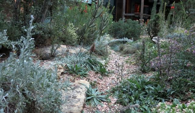path in the rock garden