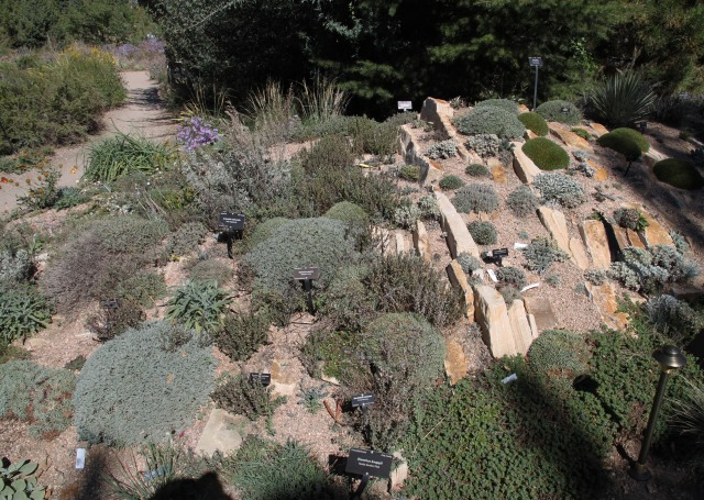part of another crevice garden
