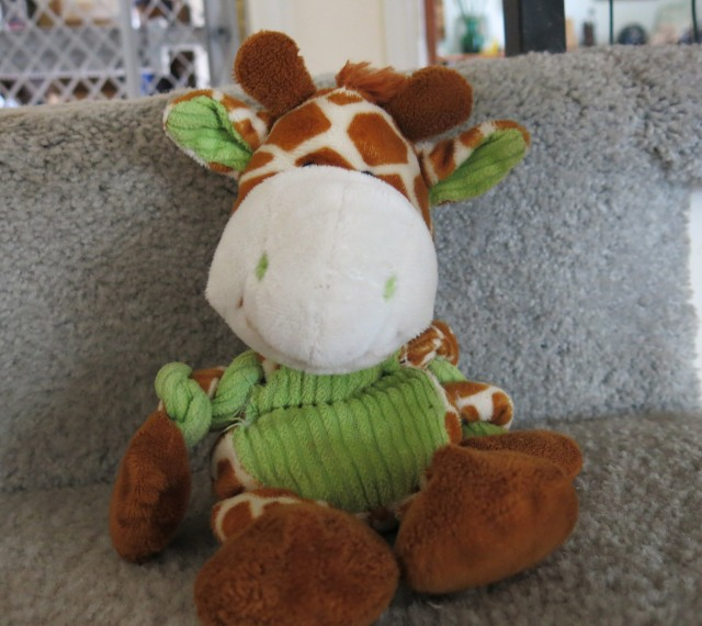 upstairs giraffe